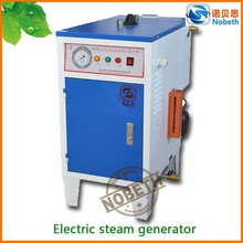 Environmental Small Vehicle Cleaning Steam Powered Electric Steam Generator For Car Washing OEM ODM Support