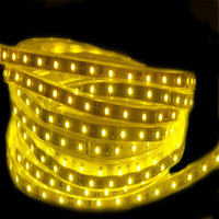 China High Quality New Design LED Strips Single Color White/ Warm White/RGB SMD5050 Flexible Led Strip Light