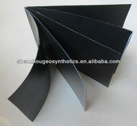 HDPE geomembrane waterproof roofing solution