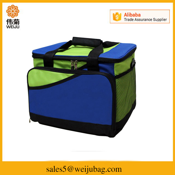 Extra large insulated outdoor picnic lunch cooler bag for frozen food