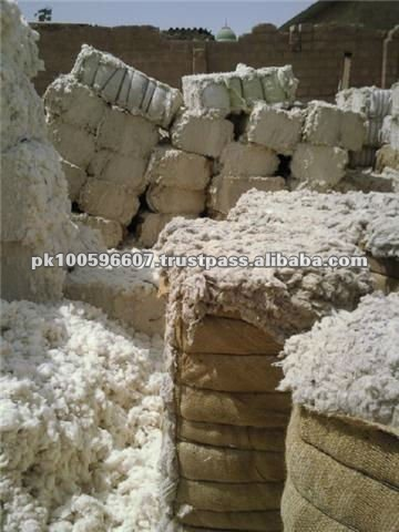 Cotton Linter / Cotton Linter pulp / Cotton Waste