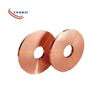 Beryllium Copper alloy strip B25 used for contacts spring
