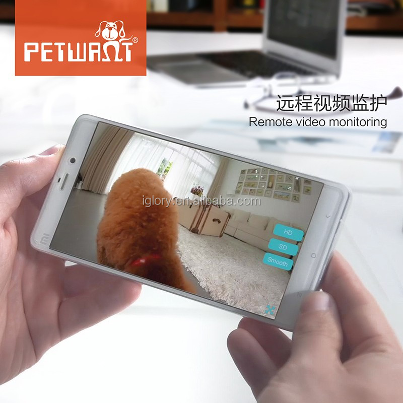 2017 remote control wifi smart APP for android and IOS web camera video monitor automatic raccoon proof cat feeder