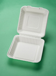 Disposable sugarcane pulp take away food container/biodegradable tableware