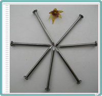 Common round wire nails(factory/supplier)