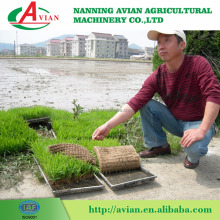Agriculture Planter 6 Rows Manual Paddy Rice Transplanter