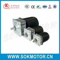 220V 55mm ac rohs electric single phase gear geared motor