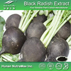 Free sample Black Radish powder/Black Radish root extract/Black Radish extract plant extract
