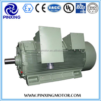 YFJ three phase AC Induction Motor