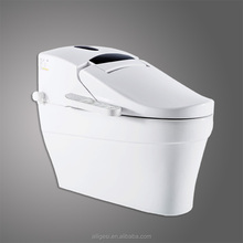 Automatic Cleansing Lavatory Electric One Piece Intelligent Toilet ZJS-02B