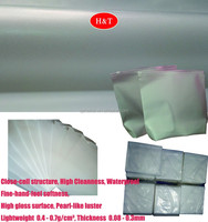 Dustfree PE Photoelectricity Protective Film