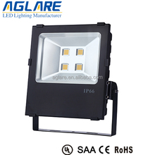 CE ROHS IP65 250w cob led floodlight
