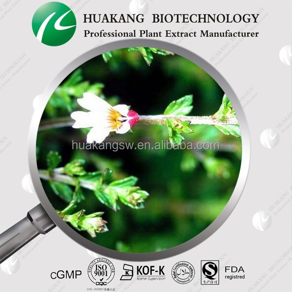 Improving Vision and Eye Natural Eyebright Extract