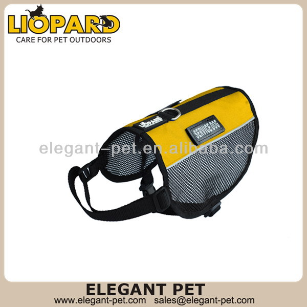 Design hot sell dog clothes and accessories