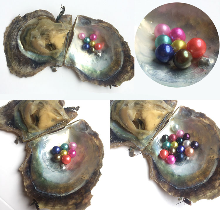 Vacuum packed 6-8mm japanese akoya pearls oyster