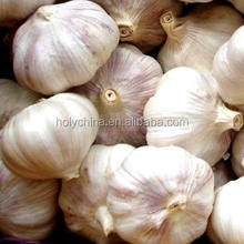 hot sale high quality natural garlic