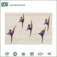 International standard rhythmic gymnastics equipment field