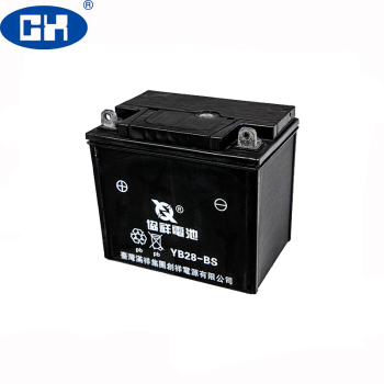 Maintenance Free Absorbent Glass Mat (AGM) Electric Tricycle Battery