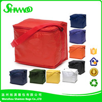 Insulated 6-Pack Bottle Nylon Cooler Picnic Lunch Bag Box Water Cooler Promotion