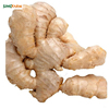 /product-detail/dry-ginger-10kg-box-wholesale-ginger-price-62025021715.html