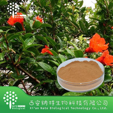 High quality herb extract powder factory pygeum bark extract/natural pygeum africanum extract Supplier