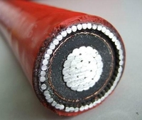 Hot! 33KV high voltage XLPE insulated steel wire armored power cable