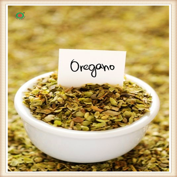 SGS certificate high quality natural green dried herbal organic oregano price