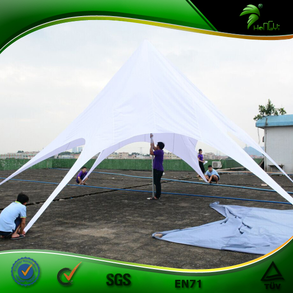 Wholesale Factory Price Customized Shape Wonderful Quality with Logo Outdoor Star Tent