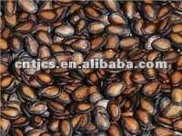 Chinese watermelon seeds color:black