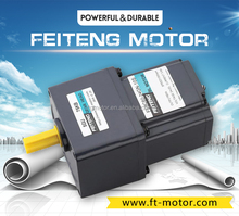 FTG 12v,24v,90v micro electric DC gear Motor