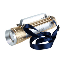 Professional Promotional Led Torch Flashlight