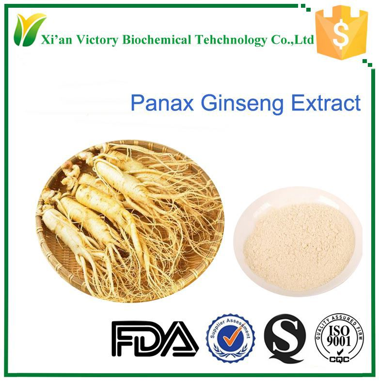 100% soluble in water panax Root ginseng extract 90045-38-8