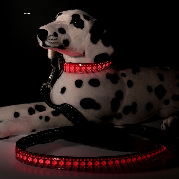 New Pet Collars & Leashes Hight Quality Very Bright USB Recharging Light Up LED Dog Leash