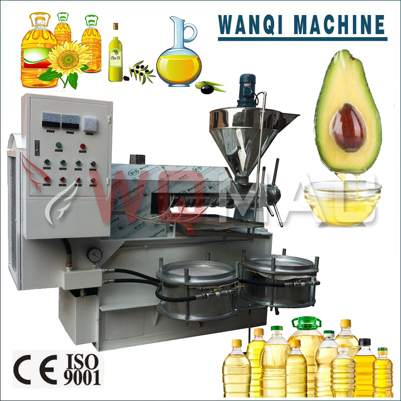 Wanqi D-125 Baobab Seeds Oil Press Machine Best Price Oil Extraction Machine