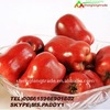 the first prize fruits huaniu apples hot sell