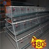 layer chicken cage for steel structure chicken house