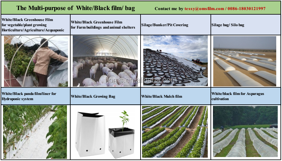 UV Stabilized Hydroponics poly Panda Film Black and White Poly Film