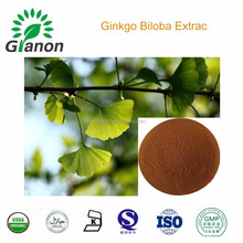 Natural---Ginkgo Biloba Extract---100%water-solution
