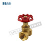 /product-detail/bwva-one-stop-solution-service-female-thread-stem-gate-valve-60710972883.html