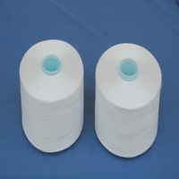 High Quality Raw White Polyester Yarn