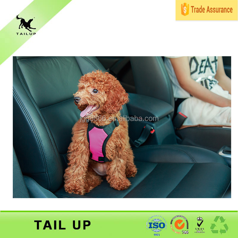 Dogs And Puppies For Sale Dog Car harness