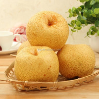 hot sale new iran fruit fresh pears