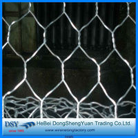 China factory high quality Galvanized Small Bird Cage Diamond Hexagonal Wire Mesh (28 years history)