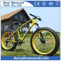 fat bike 500w/350w chopper style bicycle