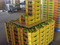 Sweet Pakistani Mangoes from Pakistan