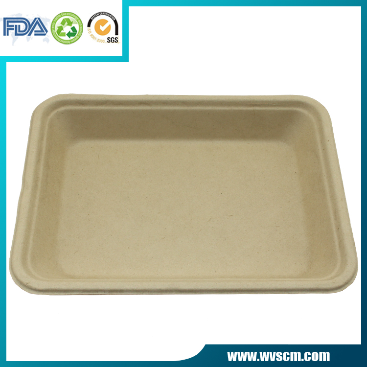 biodegradable plan fiber pulp disposable cake food container