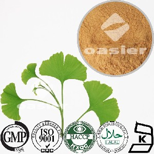 Direct manufacturer supply Natural extract of ginkgo biloba leaf