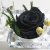 3-4cm preserved roses in acrylic box handmade by ecuador rose flowers preserved real natural roses in China