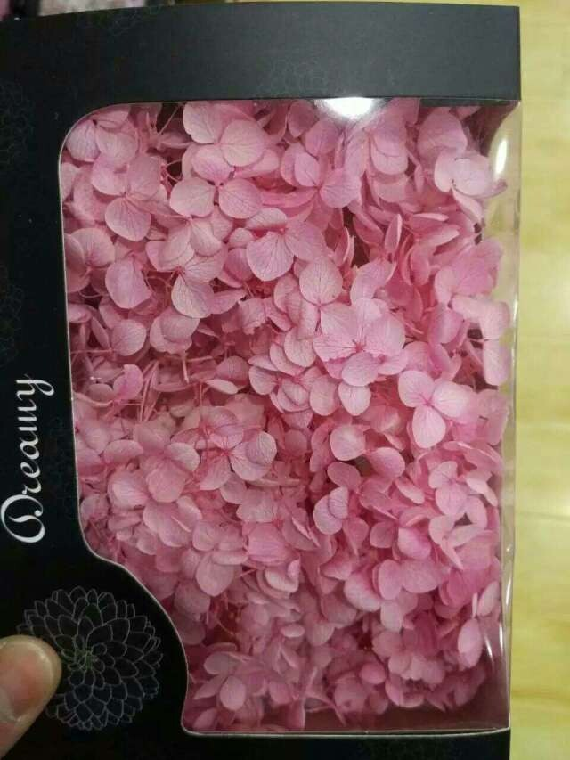 All kinds of colors Hydrangea flowers natural and fresh with long time lasting