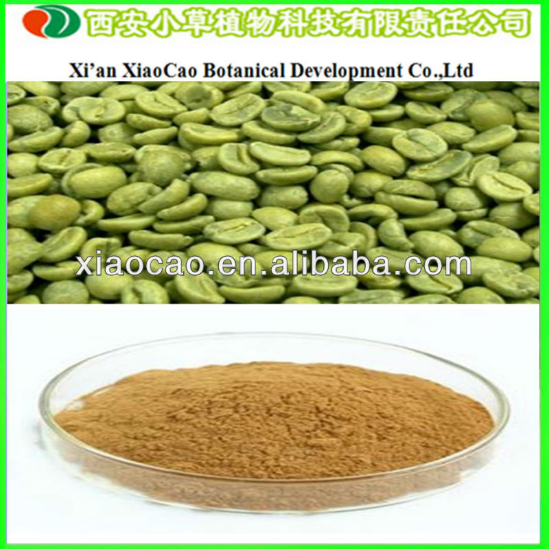 Manufacturer Supply Green Coffe Bean Extract/50% Chlorogenic Acid